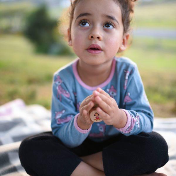 yogi fun dice